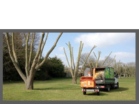 Local Authority Contracts Case Study 1