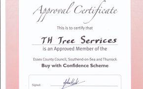 trading standard tree surgeon certificate